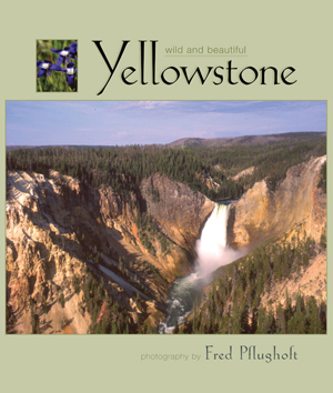 Yellowstone Wild and Beautiful align=
