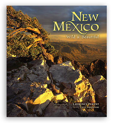 New Mexico Wild and Beautiful align=
