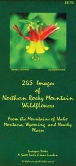 265 Images of Northern Rocky Mountain Wildflowers align=