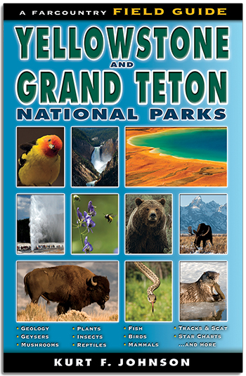 Field Guide to Yellowstone and Grand Teton National Parks align=