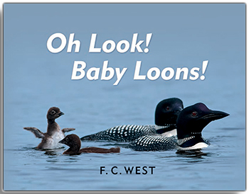 Oh Look! Baby Loons! align=