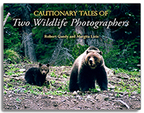 Cautionary Tales of Two Wildlife Photographers align=