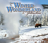 Winter Wonderland in Yellowstone align=