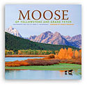 Moose of Yellowstone and Grand Teton Cover