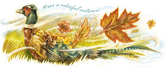 Rob's drawing of a pheasant and leaves in autumn colors